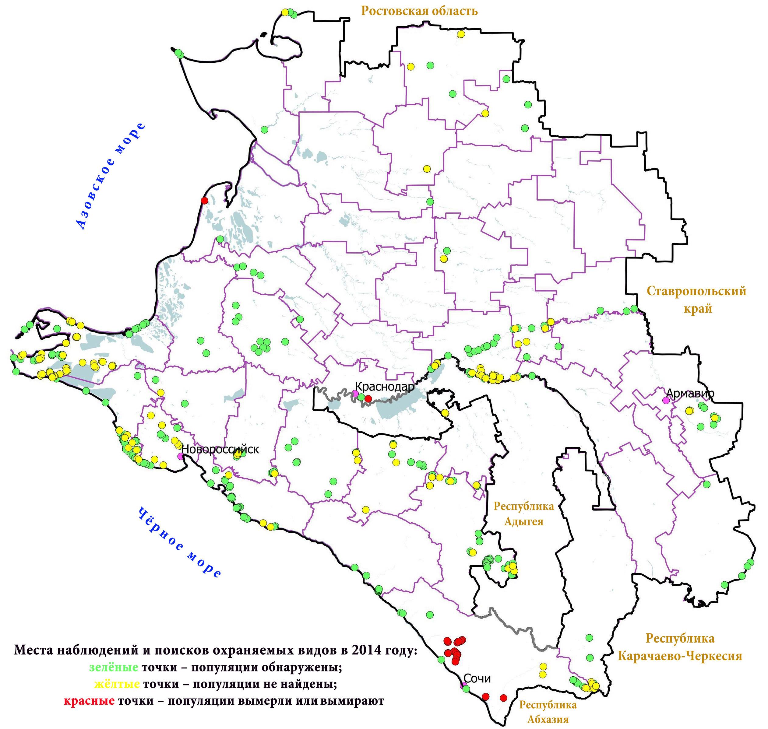 категории: грибные места краснодарского края на карте рядах несложно:
